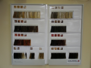 Our Brand New Goldwell Shade Chart!